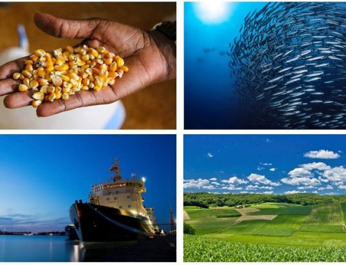 "H2020 Funding Opportunities For ""Food Security, Sustainable Agriculture And Forestry, Marine And Maritime And Inland Water Research And The Bioeconomy"""